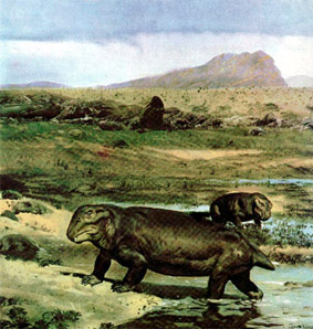 Так выглядел дицинодонт. Динозавры. Фото. Картинки. Изображения. Рисунки. Фотографии. Текст.  Dicynodont. Dinosaurs. Photo. Text. Species animals. Pictures.