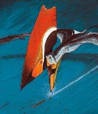 Птерозавр. Динозавры. Фото. Картинки. Изображения. Рисунки. Фотографии. Текст.  Pterosaur. Dinosaurs. Photo. Text. Species animals. Pictures.